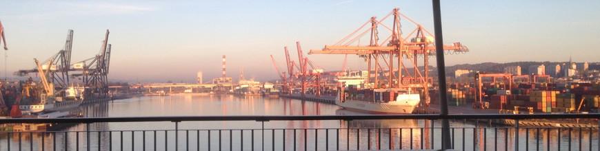 Gdynias hamn