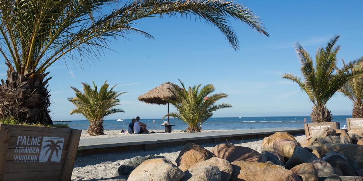 På Palmestranden finns 60 vajande palmer och långgrunda bad. Foto: Turisthus Nord