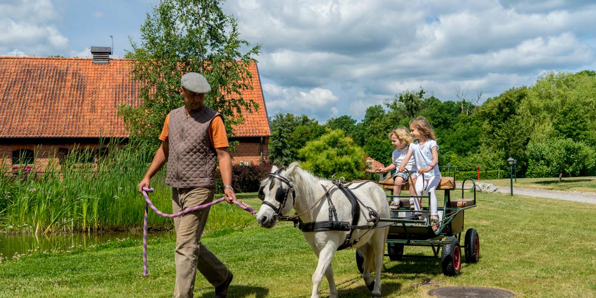 Flickor på häst och vagn