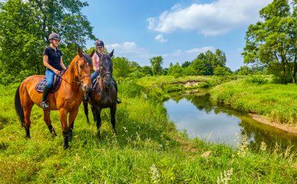 Vänner som rider häst ute i naturen